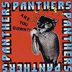 Panthers - Are You Down?