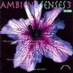 P.V.P. - Ambient Senses 3 · The Aroma