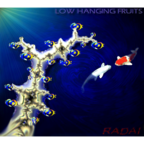Radai - Low Hanging Fruits