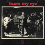 Radio Birdman - Burn My Eye