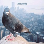 Ron Revog - The Dirty Bird Sessions