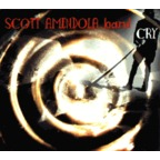 Scott Amendola Band - Cry