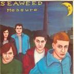 Seaweed - Measure