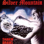 Silver Mountain - Shakin' Brains