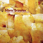 Silver Scooter - The Other Palm Springs