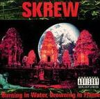 Skrew - Burning In Water Drowning In Flames