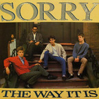 Sorry - The Way It Is
