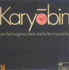 Spontaneous Music Ensemble - Karyōbin Are The Imaginary Birds Said To Live In Paradise