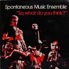 Spontaneous Music Ensemble - So, What Do You Think?
