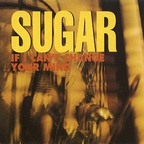 Sugar - If I Can't Change Your Mind