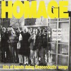 Teen Idols - Homage · Lots Of Bands Doing Descendents' Songs