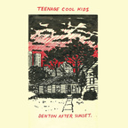Teenage Cool Kids - Denton After Sunset