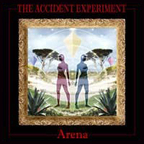 The Accident Experiment - Arena