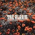 The Alarm - In The Poppy Fields
