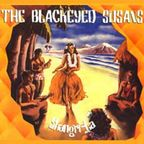 The Blackeyed Susans - Shangri-La