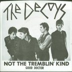 The Decoys - Not The Tremblin' Kind