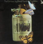 The Famous Jug Band - Sunshine Possibilities