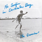The Gremies - No Surfin In Dorchester Bay