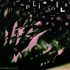 The Plimsouls - Everywhere At Once