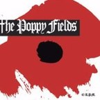The Poppy Fields - 45 R.P.M.
