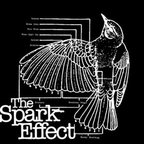 The Spark Effect - Heartwork