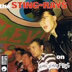The Sting Rays - On Self Destruct