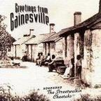 The Streetwalkin' Cheetahs - Greetings From Gainesville