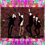 The Wilde Flowers - s/t