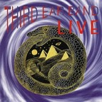 Third Ear Band - Live