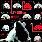 Third Rail (US 1) - Live At The Rat