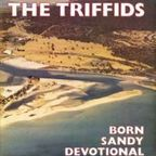 Triffids - Born Sandy Devotional