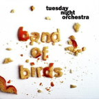 Tuesday Night Orchestra - Band Of Birds