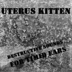 Uterus Kitten - Destructive Sounds For Timid Ears