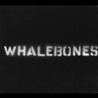 Whalebones - Morning Man
