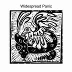 Widespread Panic - s/t