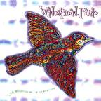 Widespread Panic - 'Til The Medicine Takes