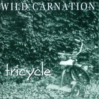Wild Carnation - Tricycle