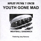 Youth Gone Mad - Meatball Sandwich